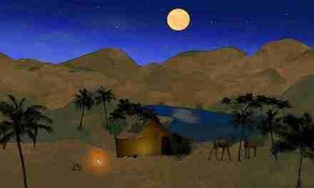 Vida en el desierto