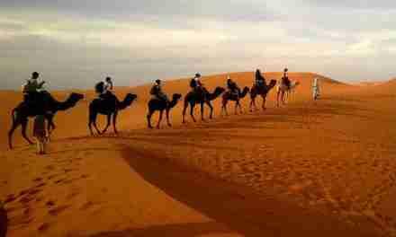 Caminando en el desierto parte 2