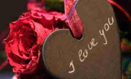 ¿Amor garantizado?