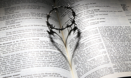 Libro transformador